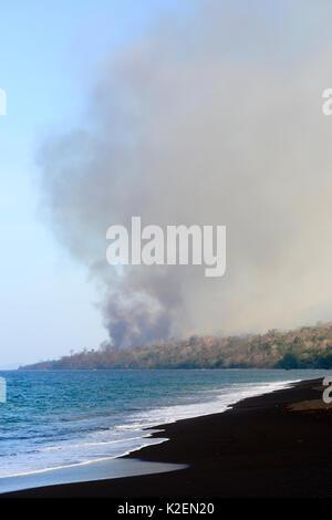 Feuer im Inneren der Tangkoko National Park. Der Brand dauerte zwei Wochen, bis es durch einen Sturm vom Meer ausgelöscht - Stockfoto