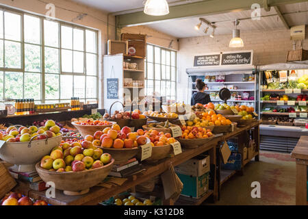 Erdige Essen nachhaltige Lebensmittelgeschäft, Causewayside, Edinburgh Southside, Schottland, Großbritannien - Stockfoto