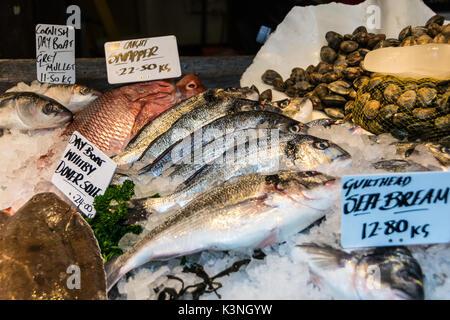 Close-up von der Dorade in einem Fischgeschäft Abschaltdruck am Borough Market, London, SE1, UK - Stockfoto