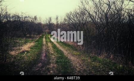 Ländliche Straße durch landwirtschaftliche Felder während eines dunklen Ende Winter. - Stockfoto