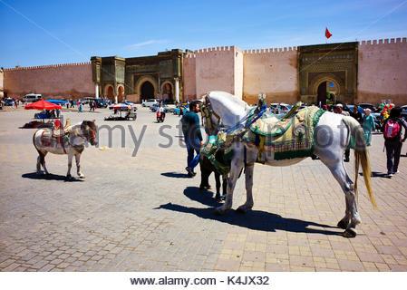 El Hedim Square in Meknes, Marokko, Nordafrika, Afrika - Stockfoto