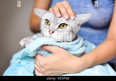 Frau mit einer Katze nur gewaschen worden - Stockfoto