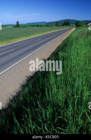 Airlie Straße, Benton County Scenic Loop, Polk County, Oregon - Stockfoto