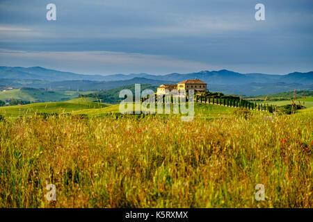 italien toskana val di cecina landschaft um volterra stockfoto bild 48679849 alamy. Black Bedroom Furniture Sets. Home Design Ideas