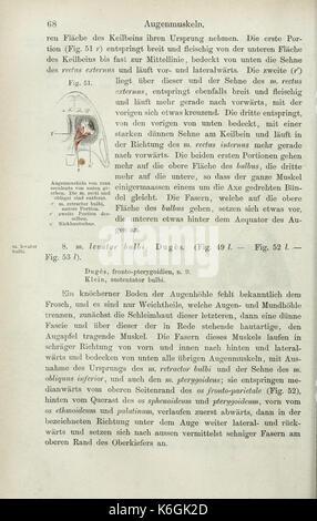 Die Anatomie des Frosches (Seite 68) BHL 33481539 - Stockfoto