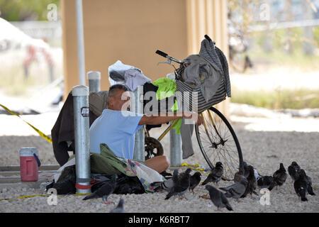 Miami Beach, FL, USA. 13 Sep, 2017. (Exklusive DECKUNG) *** KEINE NY TAGESZEITUNGEN *** *** EDITORIAL NUR VERWENDEN - Stockfoto