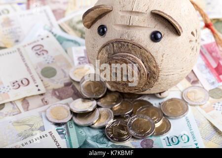 Bulgarische Währung Bgn Banknoten Und Münzen Stockfoto Bild