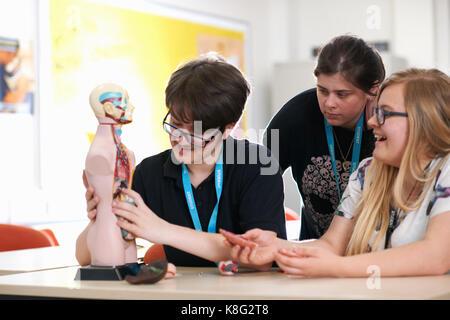 Studenten der Biologie Klasse - Stockfoto