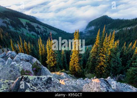 Deer Park, Olympic National Park, Washington, USA - Stockfoto