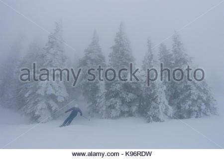 Ein jugendlich Mädchen Skifahren in nebligen, whiteout Bedingungen in der Nähe von Rauhreif bedeckt Koniferen. - Stockfoto
