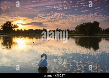 Einen schönen Sommer Sonnenuntergang über einem See in Bushy Park, London, UK. Eine bunte Himmel auf dem Spiegel - Stockfoto
