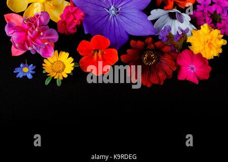 Verschiedene Arten von Blumen für Nutzung im Hintergrund Stockfoto ...