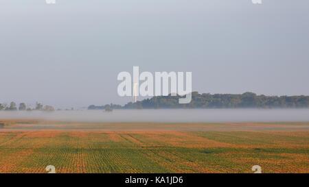 Foggy bean Feld mit Wea und Bäume in der Dämmerung im südlichen Ontario - Stockfoto