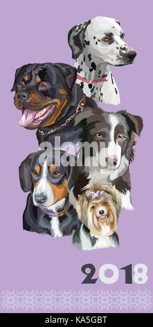 Vertikale Postkarte mit Hunden verschiedener Rassen (Rottweiler, Border Collie, Dalmatiner, Biewer terrier Entlebucher - Stockfoto