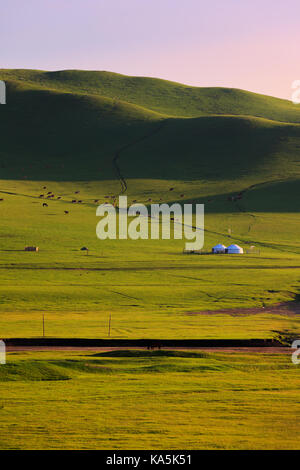 Mongolische traditionelle Häuser in immensen Grasland. Sie diese Zelte Anruf als ' ' Jurte '' - Stockfoto