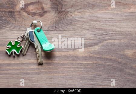 Satz von Metall- und magnetische Schlüssel mit einem schlüsselring-förmige Kleeblatt in Grün auf einem dunklen Hintergrund - Stockfoto