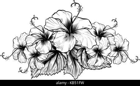 Hibiskus Blumen vintage Holzschnitt Radierung Gravur Vektor ...
