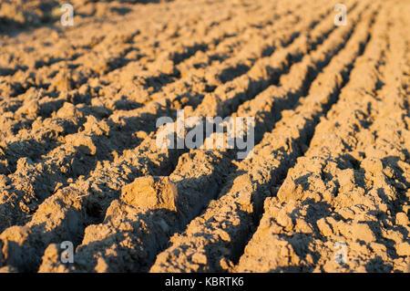 In der Nähe Bild von Gepflügt landwirtschaftliches Feld im Herbst. - Stockfoto