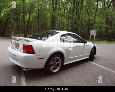 White Mustang in Morris County NJ Park zeigen, große Räder und Reifen. Furten hit Pony Car wurde 1964 eingeführt - Stockfoto