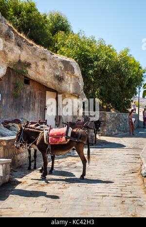 Schöne Esel namens Taxi auf den steilen Berg Akropolis von Lindos, Insel Rhodos, Griechenland - Stockfoto