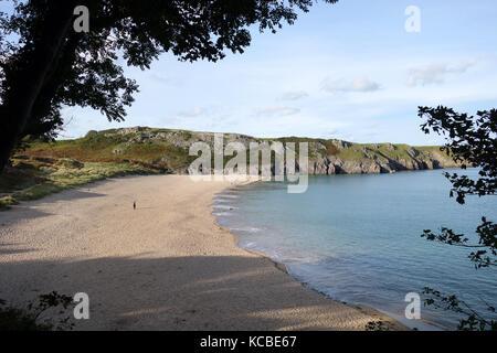 Barafundle Bucht in Pembrokeshire, West Wales, Großbritannien - Stockfoto