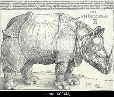 Das Rhinozeros, 1515, Holzschnitt, Bild: 8 3/8 x 11 5/8 in. (21,3 x 29,5 cm) getrimmten Linie zu blockieren, Oben, - Stockfoto