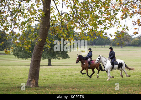 Windsor, Großbritannien. 4. Oktober 2017. Reiter auf dem Pferd im Windsor Great Park im Herbst. Credit: Mark kerrison/alamy - Stockfoto