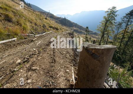 Fagaras-Gebirge Natura 2000-Gebiet / Rumänien: Einer von vielen gewaltigen Einschnitten im Ucea Mare-Tal im Fagaras - Stockfoto