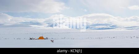 Schneemobilfahrer Camp unter dem mckenzie Mountains mit Blick auf eine hohe Tundra Plateau in der Mitte des Griffes - Stockfoto