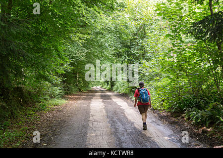 Wandern an einem Feldweg in den Wald von Dean, UKwoodland - Stockfoto