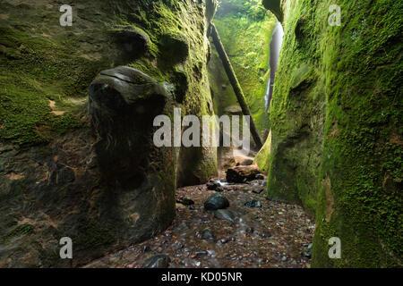 Sombrio Beach Canyon, Juan de Fuca Trail, in der Nähe von Port Renfrew, Vancouver Island, BC Kanada - Stockfoto