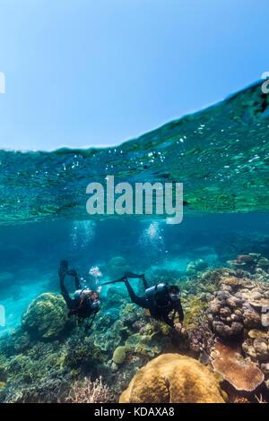 Split shot von Tauchern erkundet die Korallenformationen von Agincourt Reef, Great Barrier Reef Marine Park, Port - Stockfoto