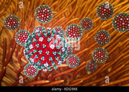 Grippeviren. Konzeptionelle Bild der Influenza Viren (rot) in den Atemwegen. Die Viruspartikel nicht in der gleichen - Stockfoto