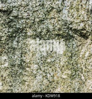Die Textur von Naturstein Granit grau, durchsetzt mit Moss - Stockfoto