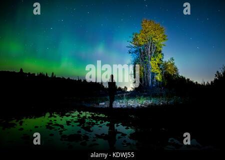 Die Nordlichter über den Elbow River westlich von Calgary, Alberta, Kanada. - Stockfoto