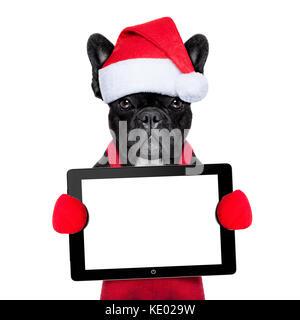 Santa Claus Weihnachten Hund einen Hut tragen, ein Touchpad oder einen Tablet-PC, auf weißem Hintergrund - Stockfoto