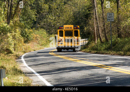 American School Bus fährt durch Wald, Pennsylvania, United States. - Stockfoto