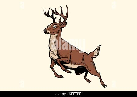 Laufender Hirsch springen - Stockfoto