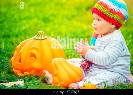halloween k rbisse mit geschnitzten gesichtern stockfoto bild 31625333 alamy. Black Bedroom Furniture Sets. Home Design Ideas