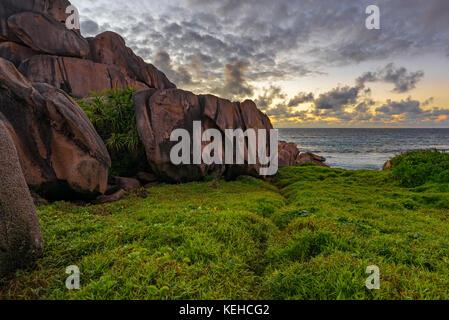 Die üppigen, grünen Gras und Felsen aus rotem Granit in den Sonnenaufgang auf la digue auf den Seychellen. - Stockfoto