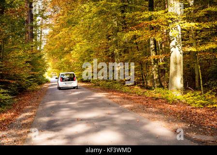 Danzig, Polen - 18. Oktober 2017: weißes Auto über die asphaltierte Straße in den Wald während der schönen Herbst. - Stockfoto