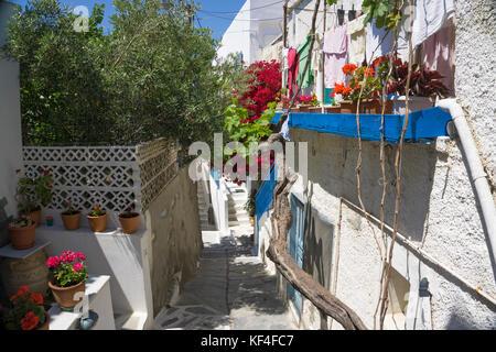 Typische Aegean Houses, Blume dekoriert, Naxos, Naxos, Kykladen, Ägäis, Griechenland - Stockfoto