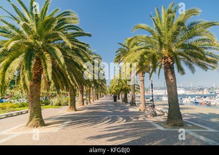 Promenade Gasse mit Palmen in La Spezia, Italien - Stockfoto