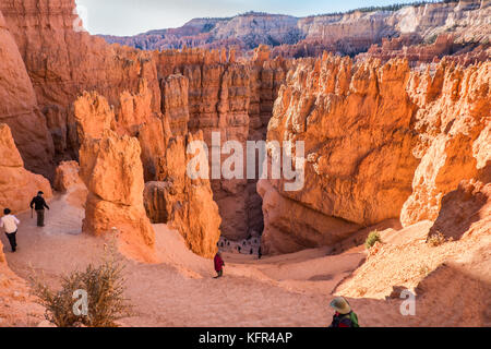 Bryce Canyon unten an der Wall Street in Utah, USA - Stockfoto