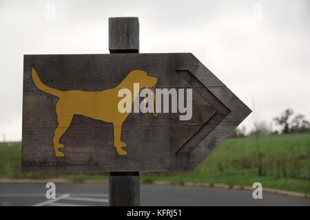 Pfeil mit gelben Labrador mit Blei im Mund Hundewiesen Zeichen auf Holz- Hintergrund - Stockfoto