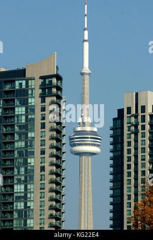 Toronto, Kanada, 17. November 2012. cn Tower zwischen Condo Towers in Toronto Downtown Core. Credit: mario Beauregard/alamy - Stockfoto
