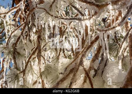 Farbenfrohe Frühling Hintergrund mit einem Muster von Eis und Eiszapfen in verschiedenen Formen und Größen auf verschlungenen - Stockfoto