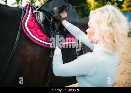 Weibliche Reiter ein Pferd satteln, Reiten. Pferdesport, junge Frau und schönen Hengst, farm animal - Stockfoto