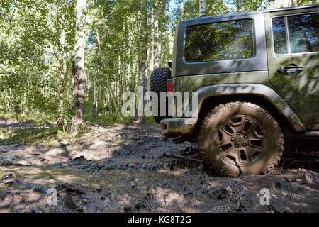 Geländewagen fahren weichen Schlamm auf einem Feldweg durch einen Wald in der Nähe zu sehen, der das Hinterrad - Stockfoto