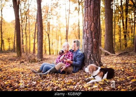 Älteres Ehepaar mit Hund auf einem Spaziergang im Wald. - Stockfoto